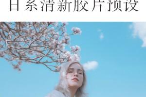 Hideaki Hamada日系LR预设
